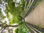 横浜のフランス山公園を歩きました
