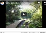 三浦半島三浦市の小網代の森を歩いてみました。とてもいいですよ!