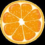 定期的にメンテナスに来てる方からオレンジピールをいただきました!
