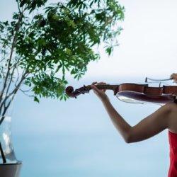 葉山でバイオリンとビオラを学んでみませんか?初心者大歓迎!
