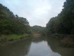 神奈川県立「四季の森公園」を歩いてみましたー